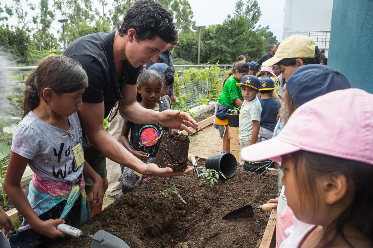 LA Galaxy players planting plants with children