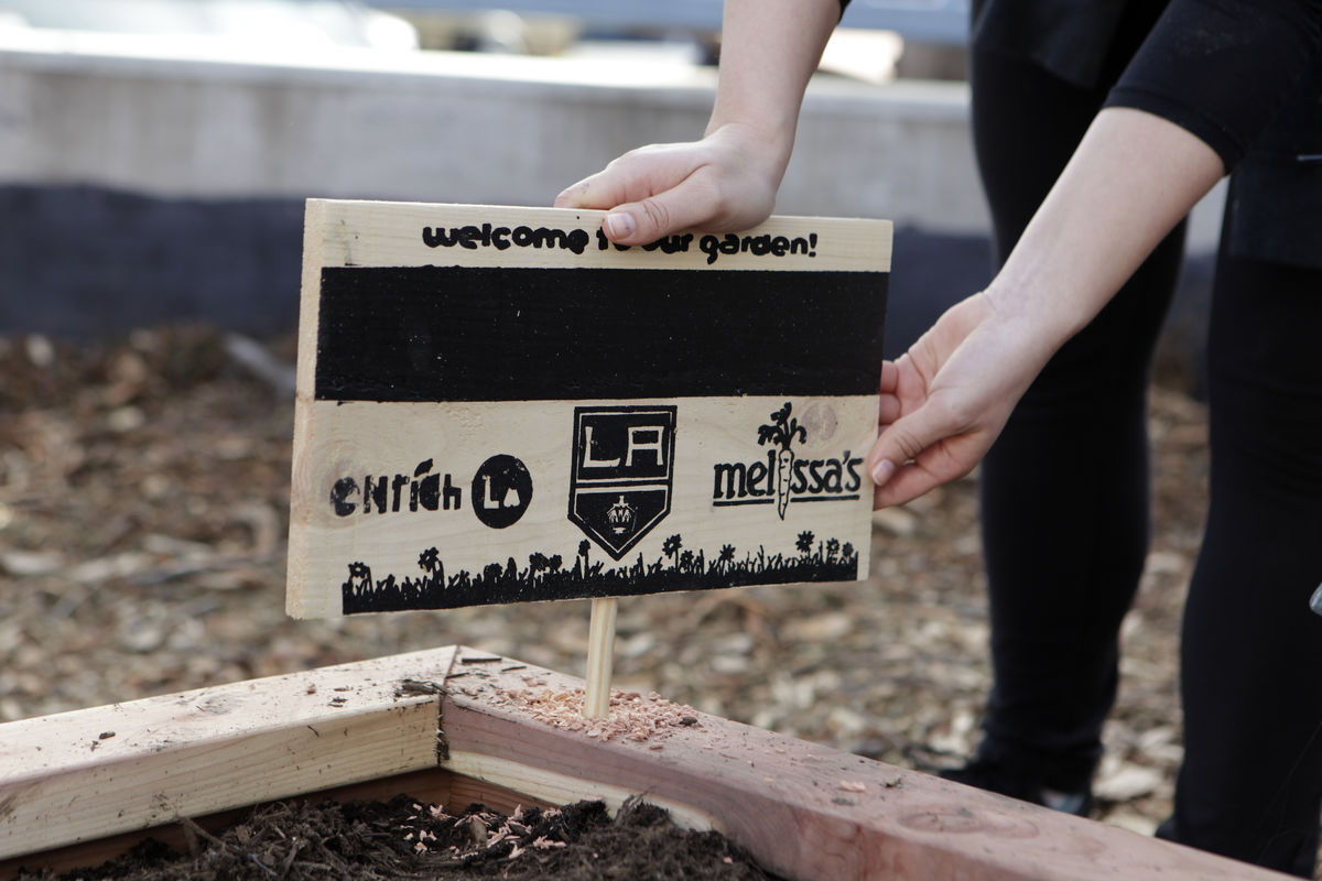 LA Kings staff put finishing touches on a brand new, edible and interactive garden for 500 students at 20th Street Elementary.