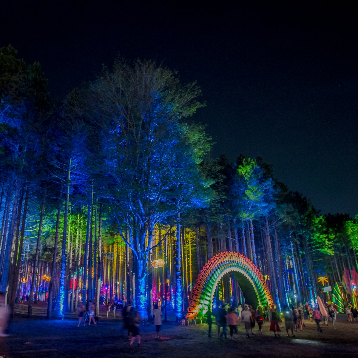 Image of an entrance in the shape of a rainbow and tall trees uplight in bright colors